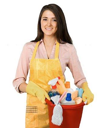 Home Cleaner Santa Rosa
